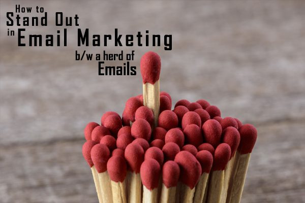 stand out custom email marketing software